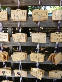 Typically at a shrine one prays for good fortune in some regard. Different Shrines celebrate different things. For a small token one could buy a wooden card and attach a wish to it. Then hang it under the tree and hope that it would come true.