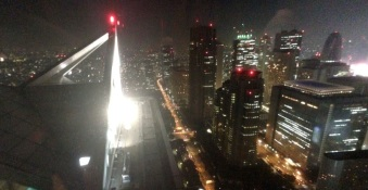 This is Tokyo. View from the New York Grill. Feeling a little Blade Runnery.